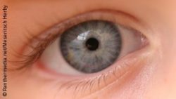 Foto: Auge eines Kindes; Copyright: panthermedia.net/Meseritsch Herby