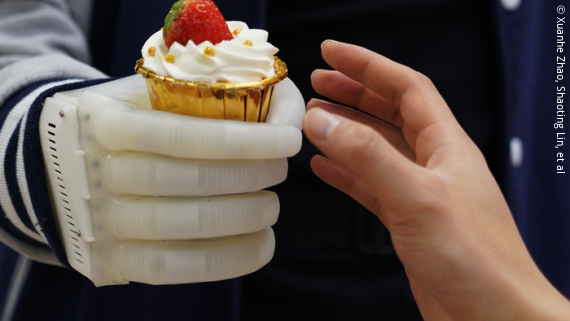 Photo: a white robotic hand holding a cupcake; Copyright: Xuanhe Zhao, Shaoting Lin, et al