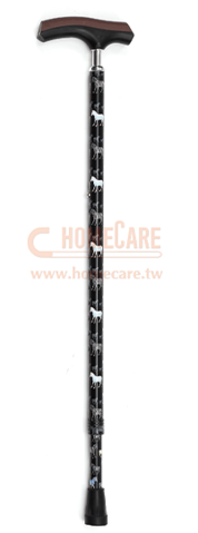 Cane w/Metal Connection Handle