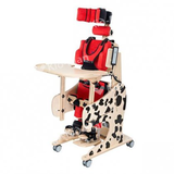 POSITIONING CHAIR WITH STANDING FUNCTION DALMANTINAS