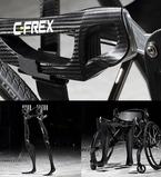 CFRP Lightweight Bipedal Walker Equipment