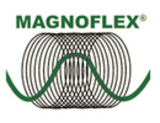 Magnetfeldanwendung