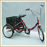 Tricycle for transport of small goods